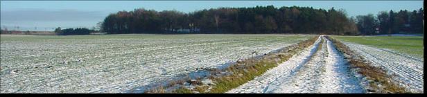 Weg zurück Richtung Wittenhögen im Schnee; (c) Bernhard Schönhofen